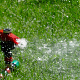 How to Maintain Your Sprinkler Filter